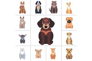 Dachshund and Other Dog Breeds Illustrations Set