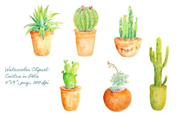 Watercolor Clipart Cactus in Pot