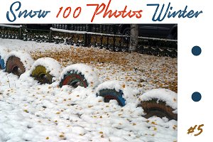 The best 100 photos of winter snow 5
