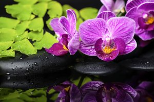 Spa concept of beautiful orchid