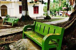 Bocas Town Bench, Panama