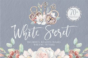 WHITE SECRET Watercolor set