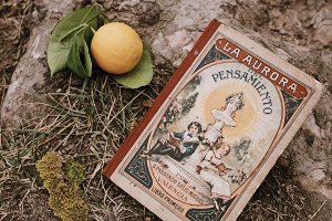 Old vintage book with mandarine