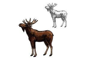 Elk vector sketch wild animal isolated icon
