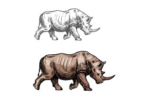 Rhinoceros vector sketch wild animal isolated icon