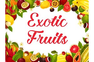 Vector poster of tropical exotic fruits harvest