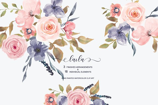 Watercolor Blush Roses Clipart