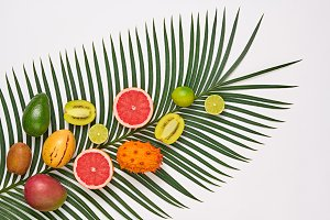Tropical Palm Leaf and Fresh Fruits.