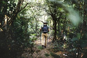 Man trekking in a forest