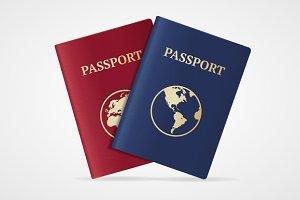 Vector passport set. Flat