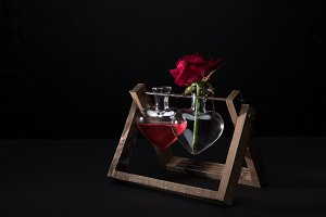red rose in heart shaped vase