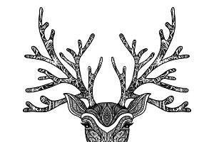 Wild deer hand drawn portrait
