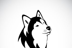 Vector of a dog siberian husky. Pet.
