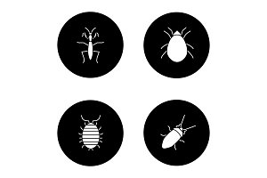 Insects glyph icons set