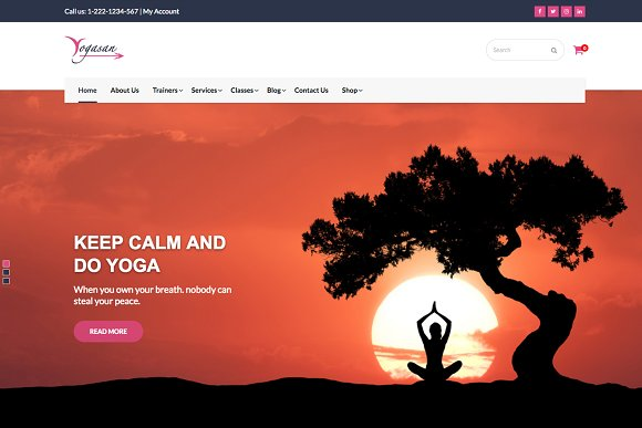Yogasan Health And Yoga WP Theme