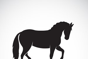 Vector of a horse. Wild Animals