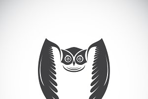 Vector of an owl design. Bird.Animal