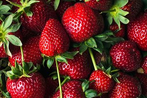 Freshly harvested ripe strawberries, top view