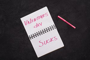 notebook with valentines day sucks