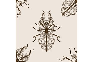 Bug Phasmatodea seamless pattern vector
