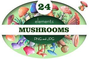 Watercolor. Mushrooms.