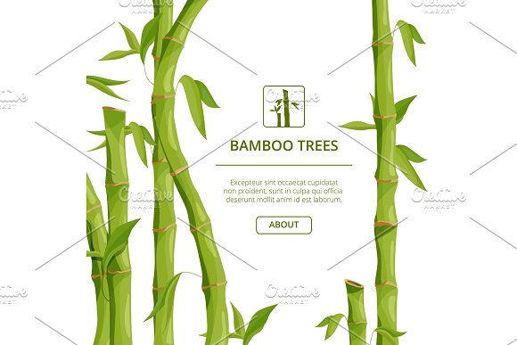 Eco Background Pictures With Decorative Illustrations Of Bamboo And Place For Your Text