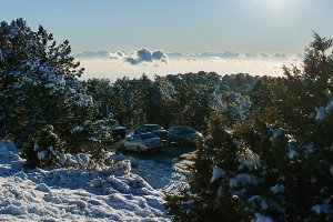 Picture of snowy mountain slope, trees, cloudy sky