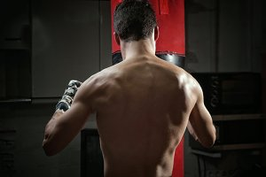 Young boxer back