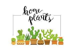 Vector home plants framed illustration with home cacti in pots
