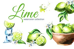 Lime. Watercolor collection