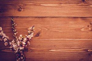 Flowers on vintage background