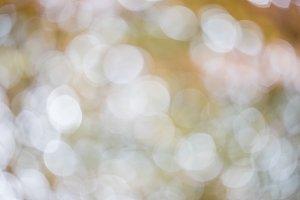 Bokeh background. Blur blurred image of river. Natural background concept