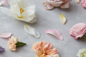 Background of flowers and petals