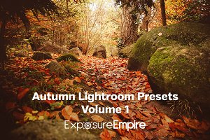 Autumn Lightroom Presets - Vol. 1