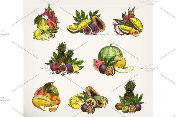 Sketched exotic and tropical fruits.
