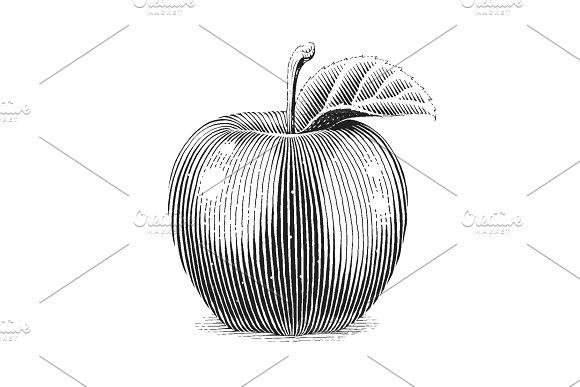 Apple fruit with leaf. Scratch board