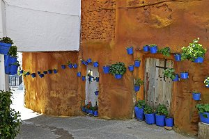 Street scene with pots of flower in the wall