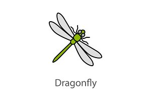 Dragonfly color icon