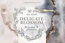 Modern Floral Illustrations &Texture