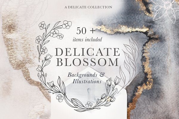 Modern Floral Illustrations &Textur…
