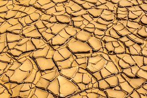 texture of dried and cracked mud