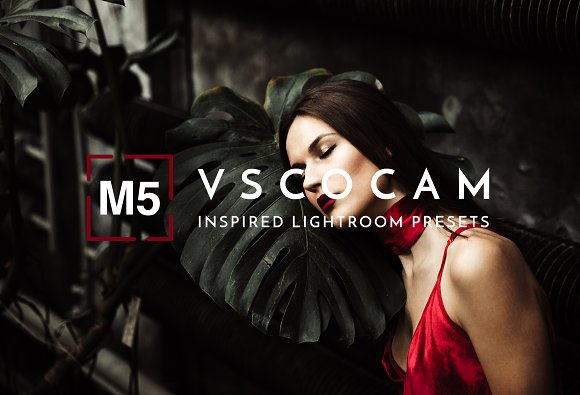 VSCO M5 Lightroom Preset