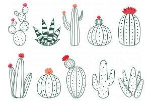 Cactus Doodle Collections Set