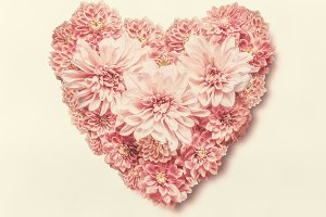 Pastel color heart made of flowers