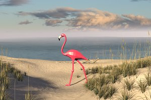 DIY Flamingo 3D model template