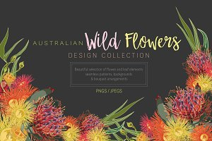 Australian Wild Flowers Collection