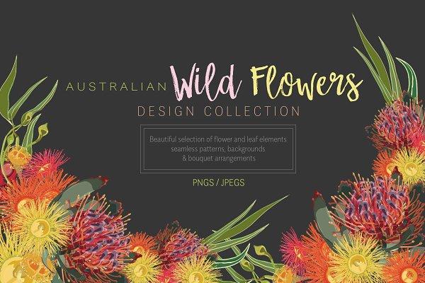 Australian Wild Flowers Collection
