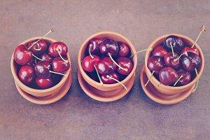 Cherries in Terra Cotta Pots