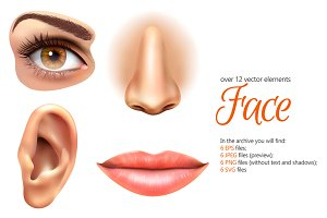 Face Realistic Set