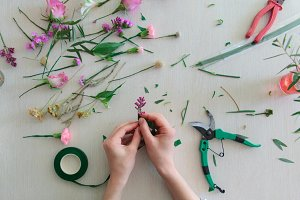 Floristics hobby and work.